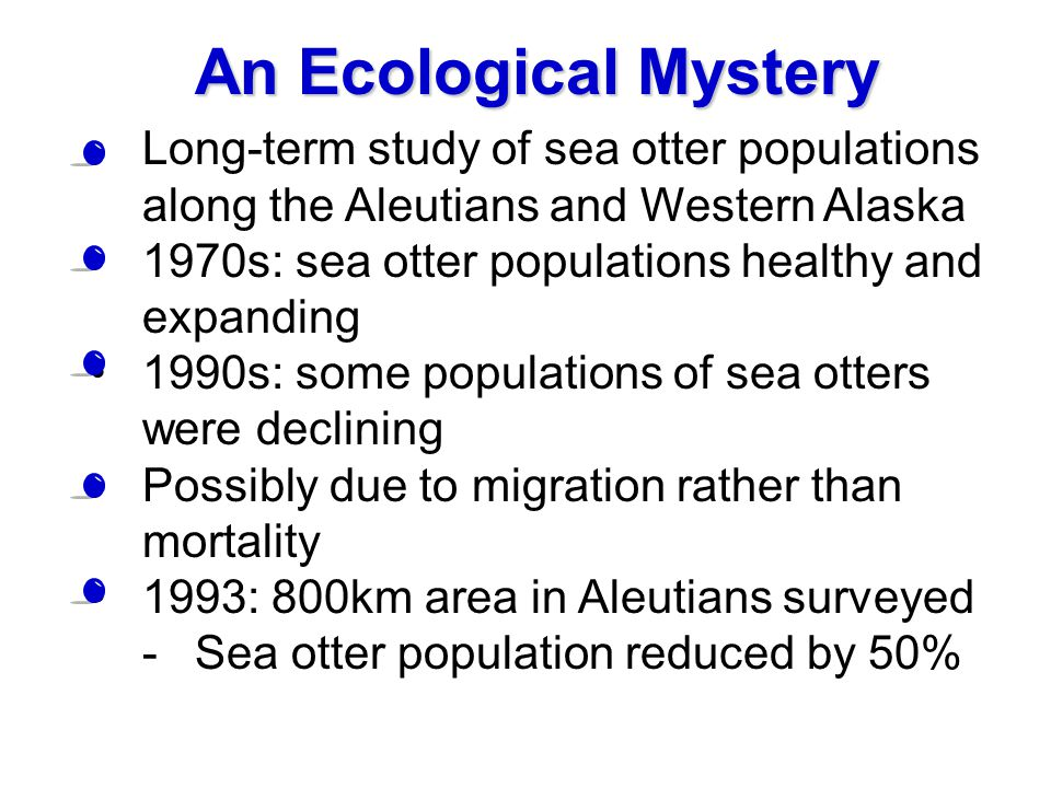 An Ecological Mystery Long-term study of sea otter populations along the Aleutians and Western Alaska.