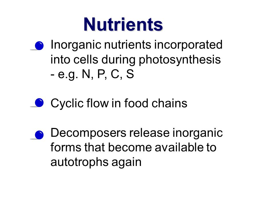 Nutrients Inorganic nutrients incorporated into cells during photosynthesis. - e.g. N, P, C, S. Cyclic flow in food chains.