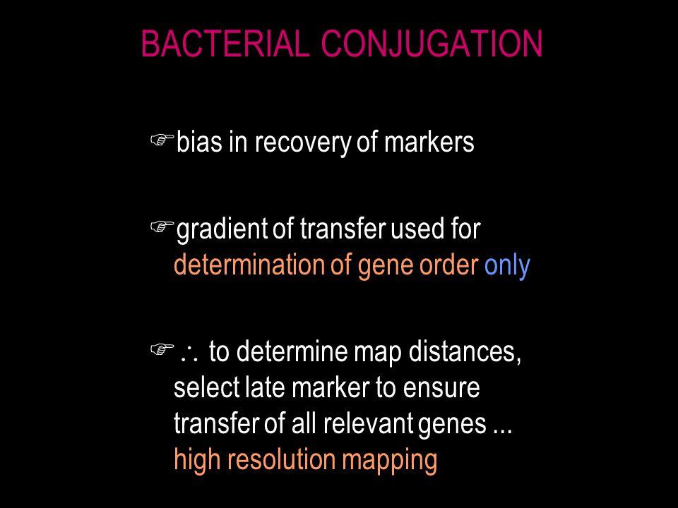 gene order determination