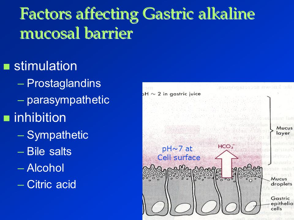Factors affecting Gastric alkaline mucosal barrier
