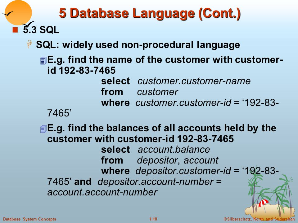 5 Database Language (Cont.)