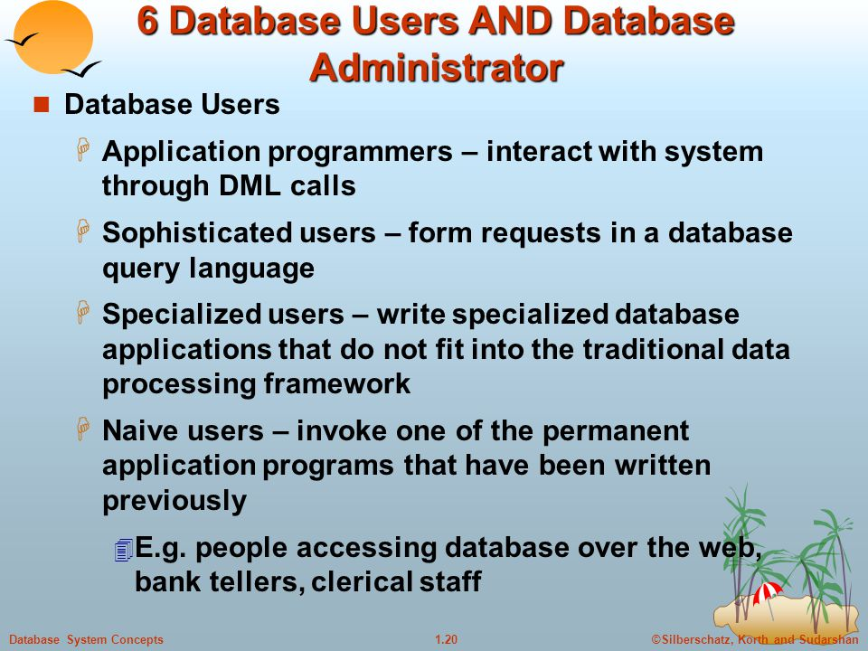 6 Database Users AND Database Administrator