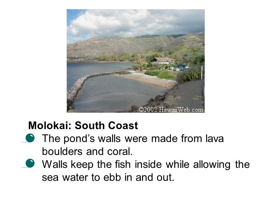 Natural Fish Pond In Hawaiian Fishponds History