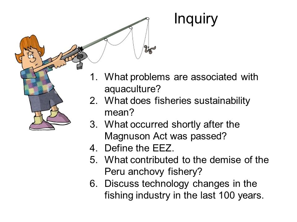017 fisheries ppt download for Sustainable fishing definition