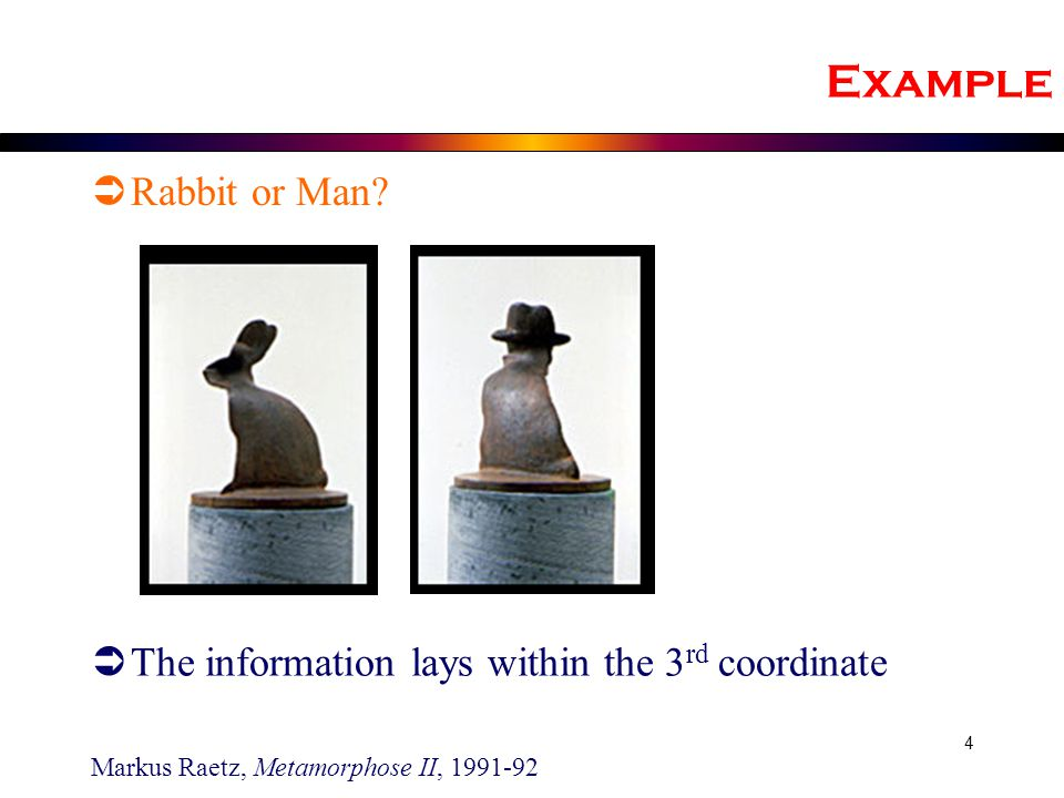 Example Rabbit or Man The information lays within the 3rd coordinate