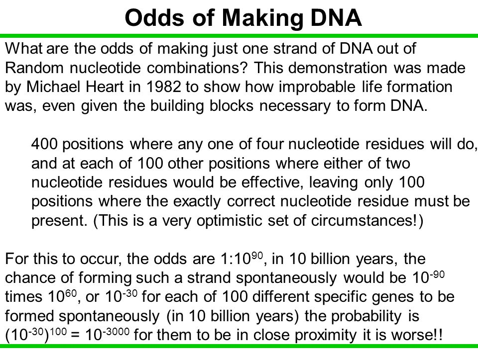 Odds of Making DNA What are the odds of making just one strand of DNA out of. Random nucleotide combinations This demonstration was made.