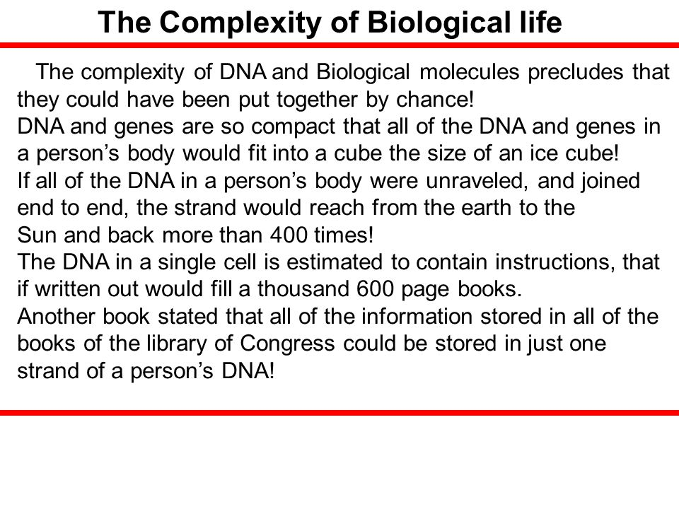 The Complexity of Biological life