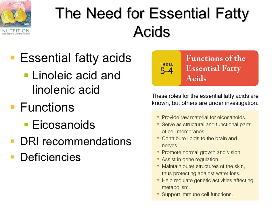 Chapter 5 The Lipids: Fats, Oils, Phospholipids, and ...