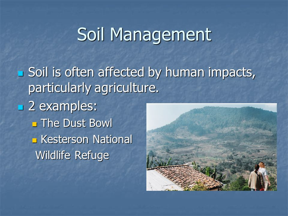 Review and soil formation ppt video online download for Soil management