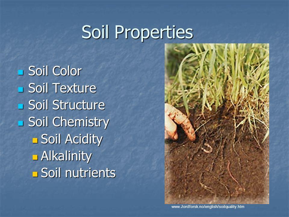 how to raise acidity in soil