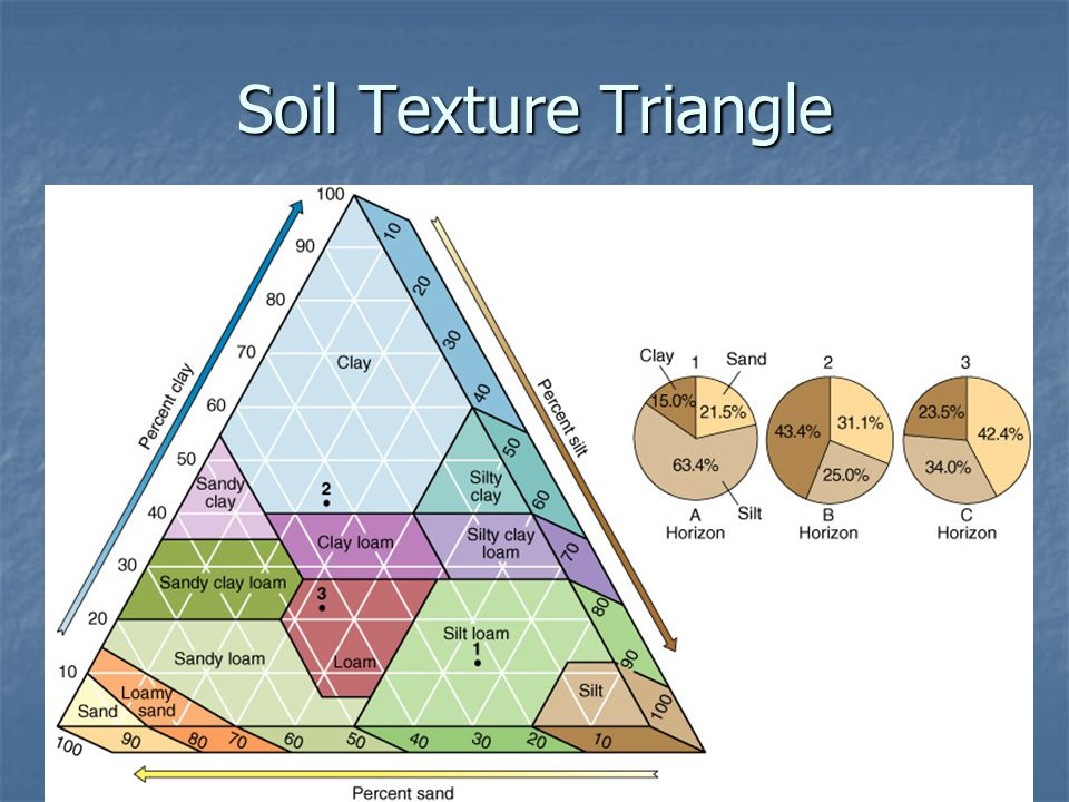 Review and soil formation ppt video online download for Soil ribbon test