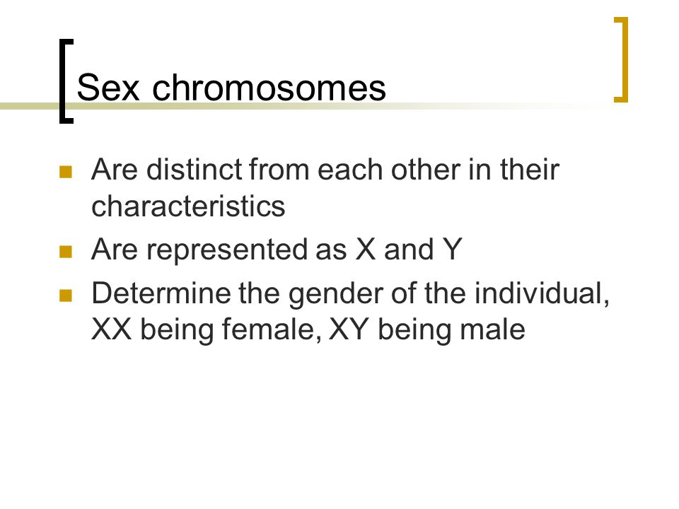 Sex chromosomes Are distinct from each other in their characteristics