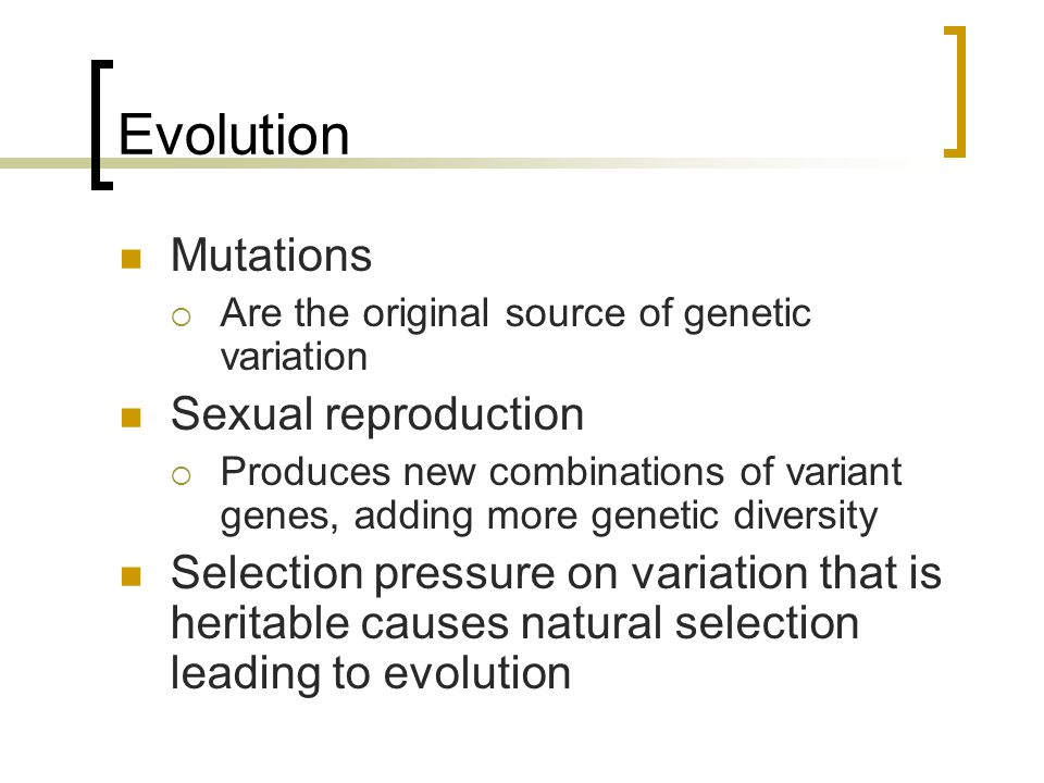 Evolution Mutations Sexual reproduction