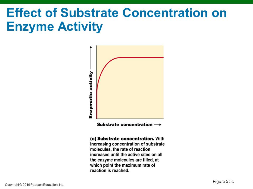 enzyme concentration Enzyme concentration definition, meaning, english dictionary, synonym, see also 'restriction enzyme',enzymic',enzymatic',enzed', reverso dictionary, english definition, english vocabulary.