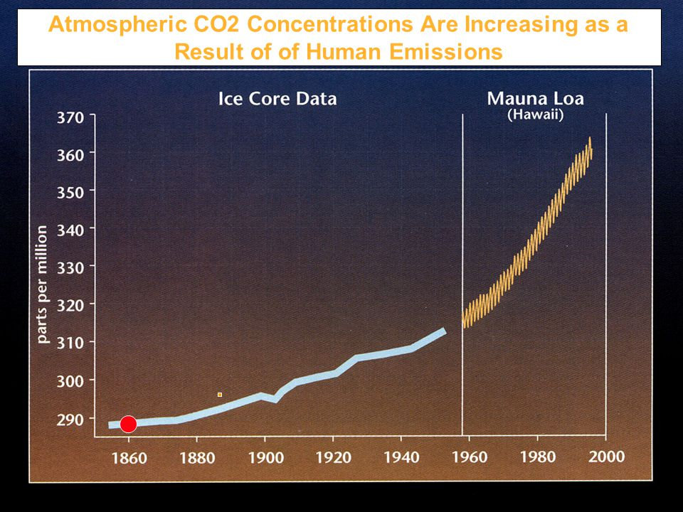 the continual changes of global warming due to the increasing concentration of greenhouse gases in t The effects of global change on soil conditions in relation to plant  increasing atmospheric co 2 concentration  changes in external conditions due to global.