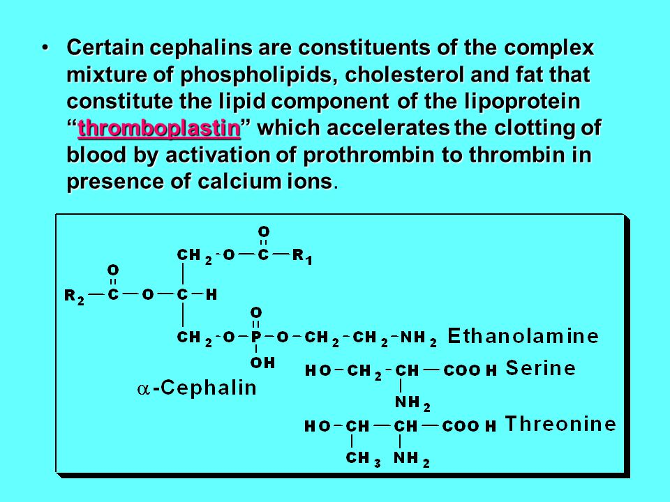 Certain cephalins are constituents of the complex mixture of phospholipids, cholesterol and fat that constitute the lipid component of the lipoprotein thromboplastin which accelerates the clotting of blood by activation of prothrombin to thrombin in presence of calcium ions.