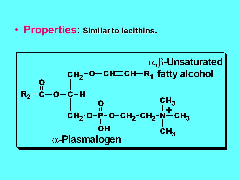 Properties: Similar to lecithins.