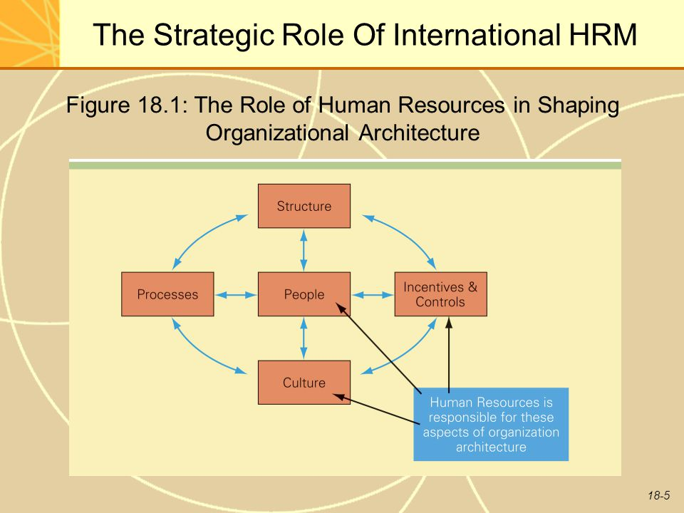 The Role of Human Resource in the Evaluation of Strategies