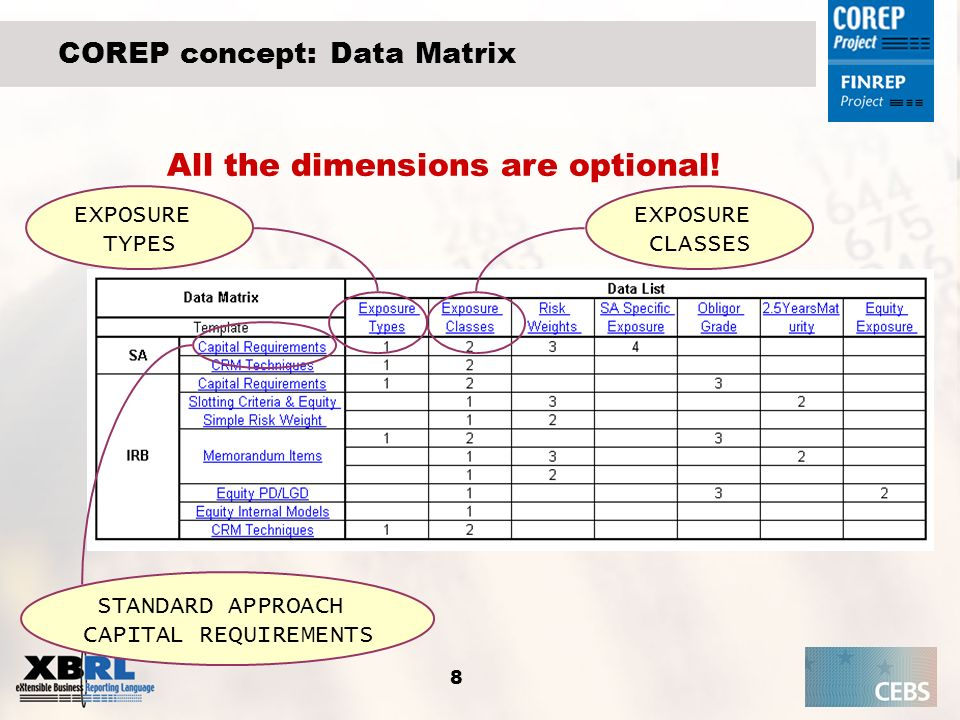 COREP concept: Data Matrix