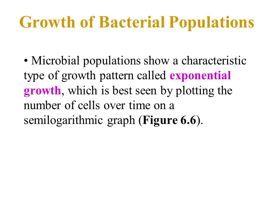 Growth of Bacterial Populations