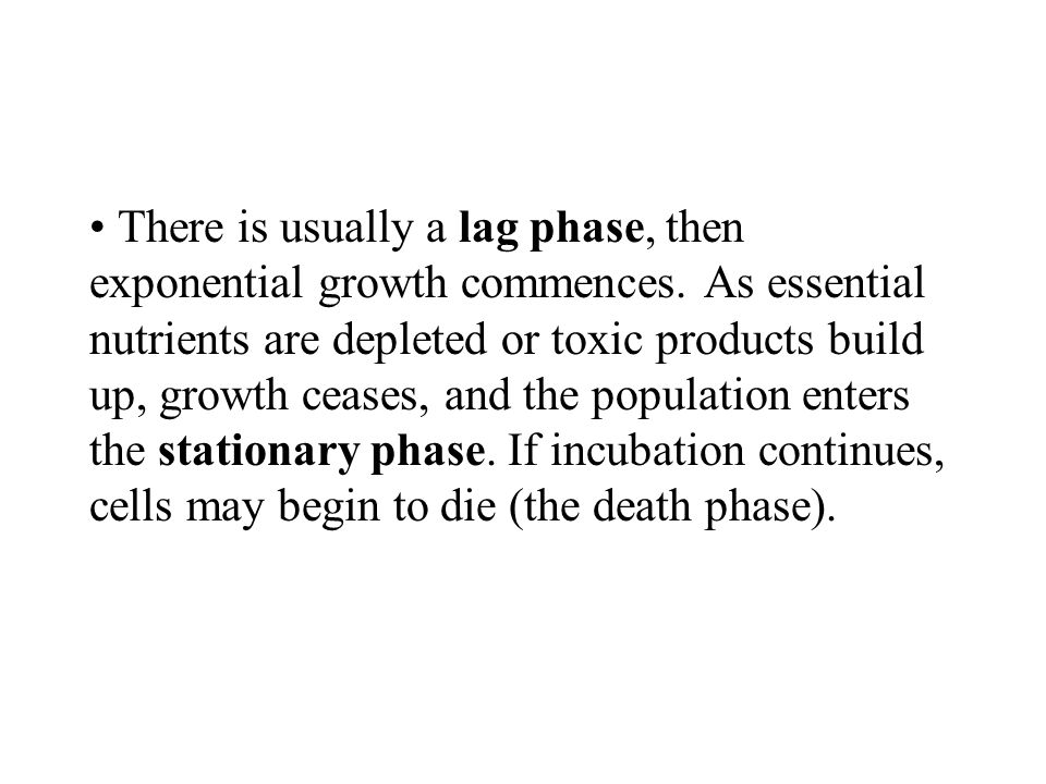 There is usually a lag phase, then exponential growth commences