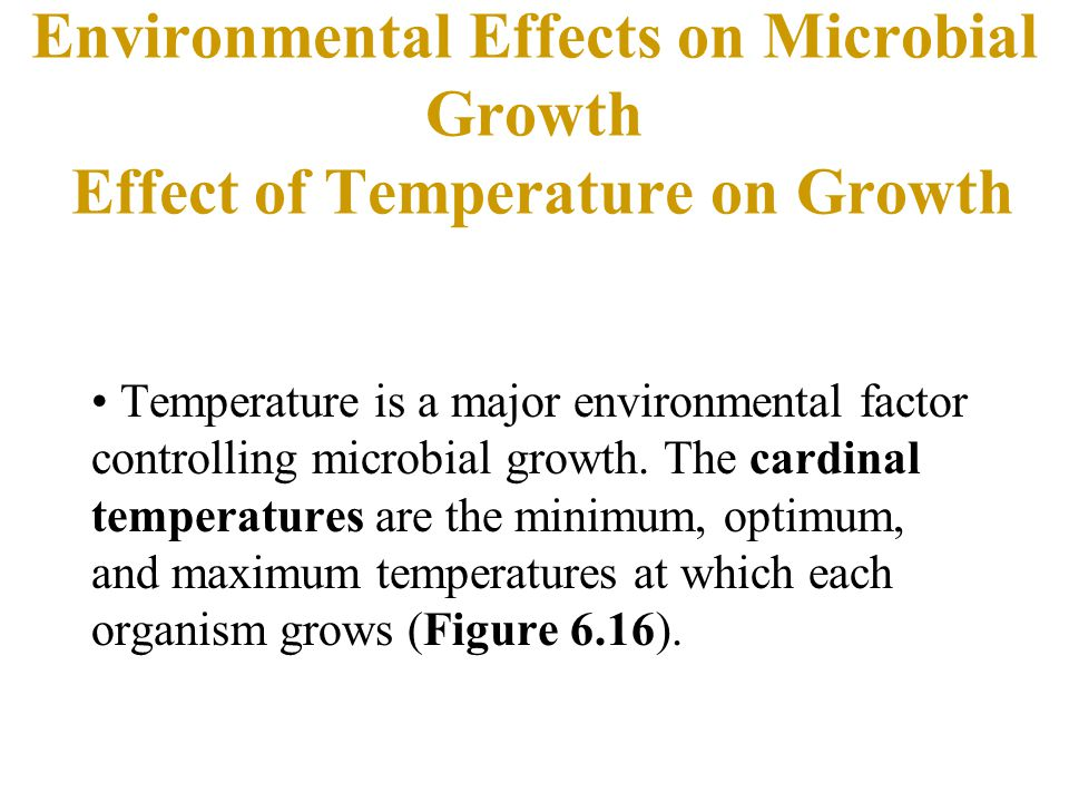 Environmental Effects on Microbial Growth Effect of Temperature on Growth