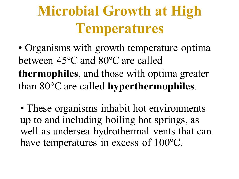 Microbial Growth at High Temperatures