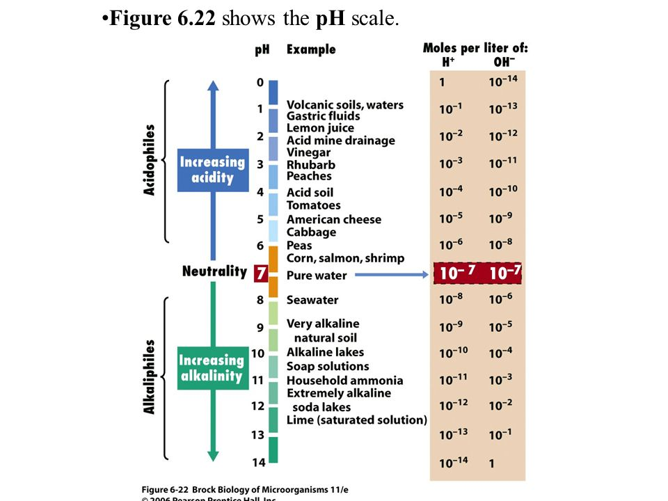 Figure 6.22 shows the pH scale.