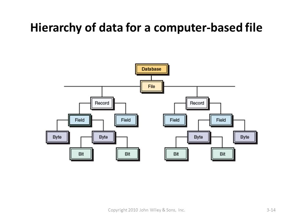 Hierarchy of data for a computer-based file