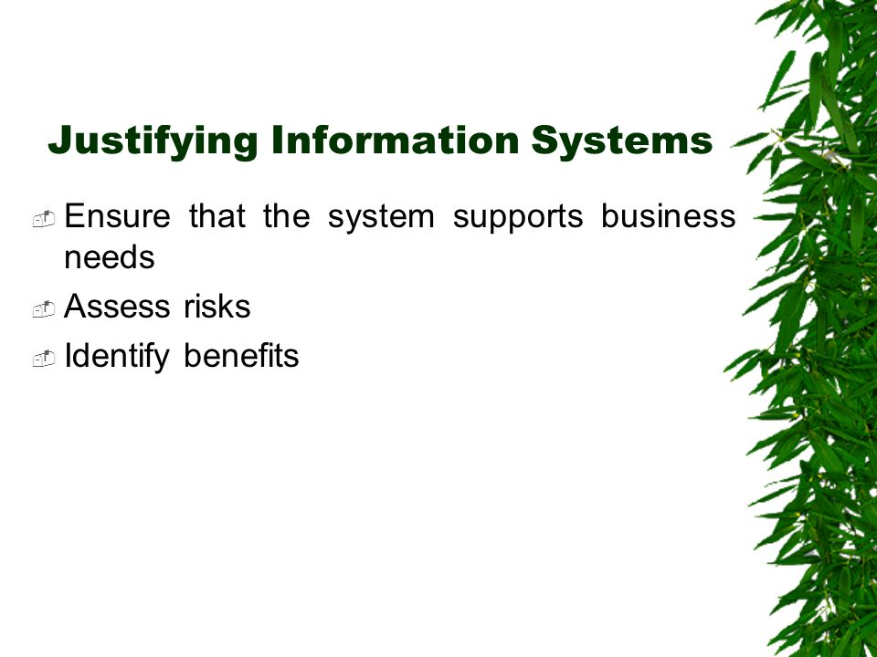 Justifying Information Systems