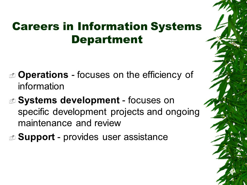 Careers in Information Systems Department