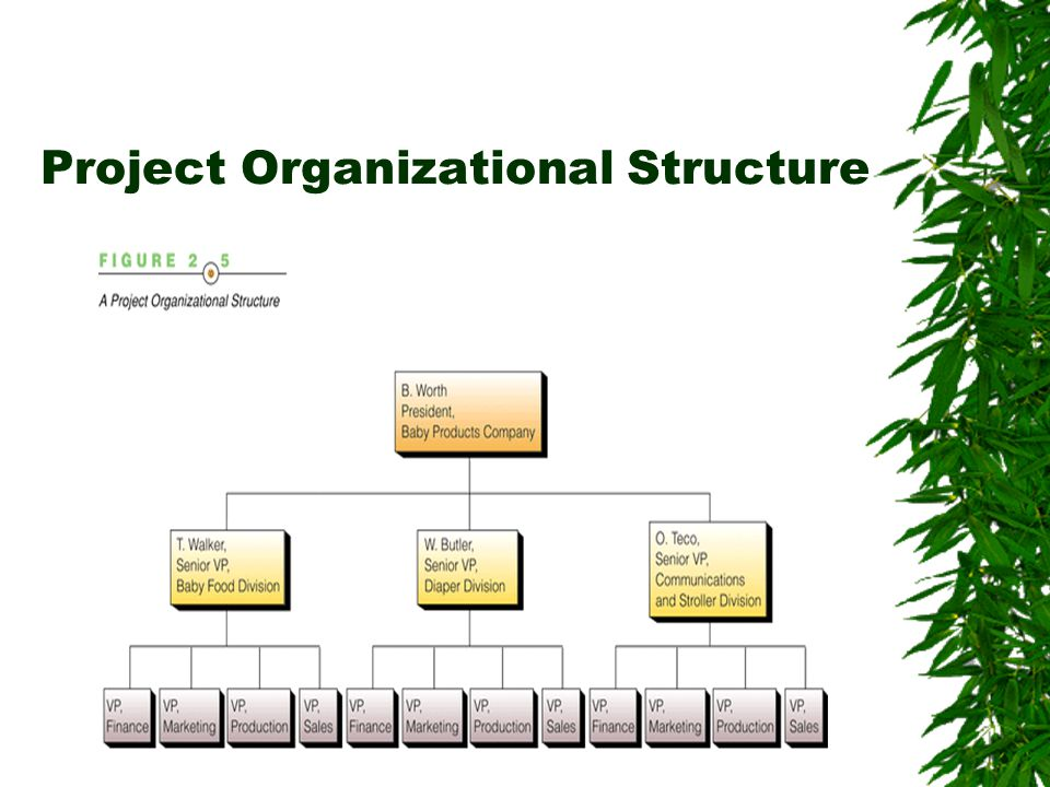 Project Organizational Structure