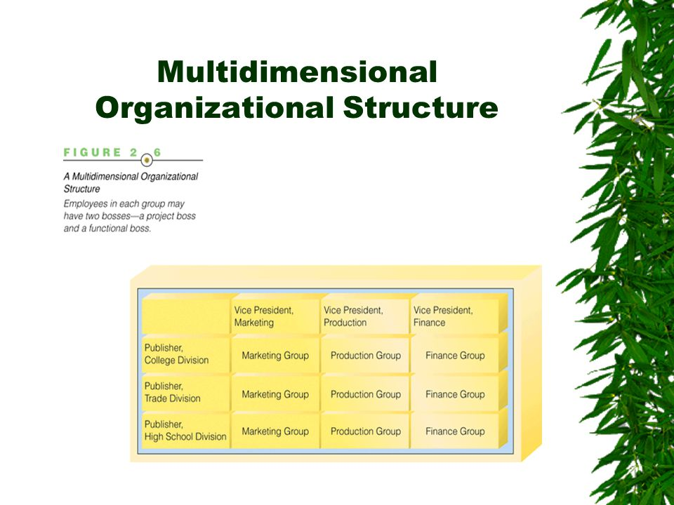 Multidimensional Organizational Structure