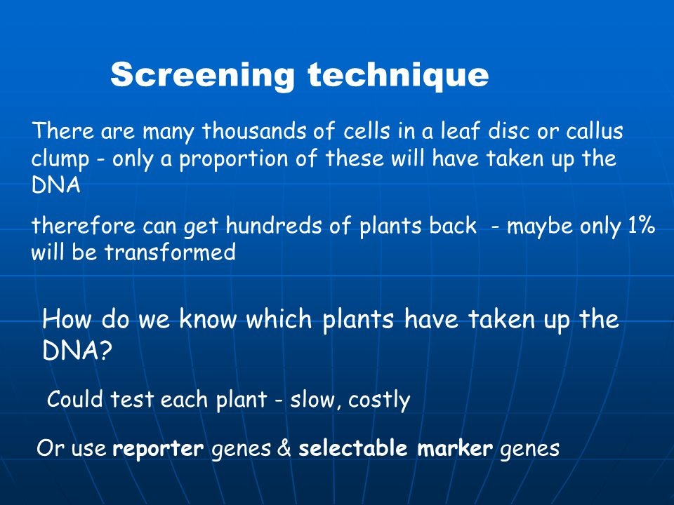 Transgenic Technology Ppt Download