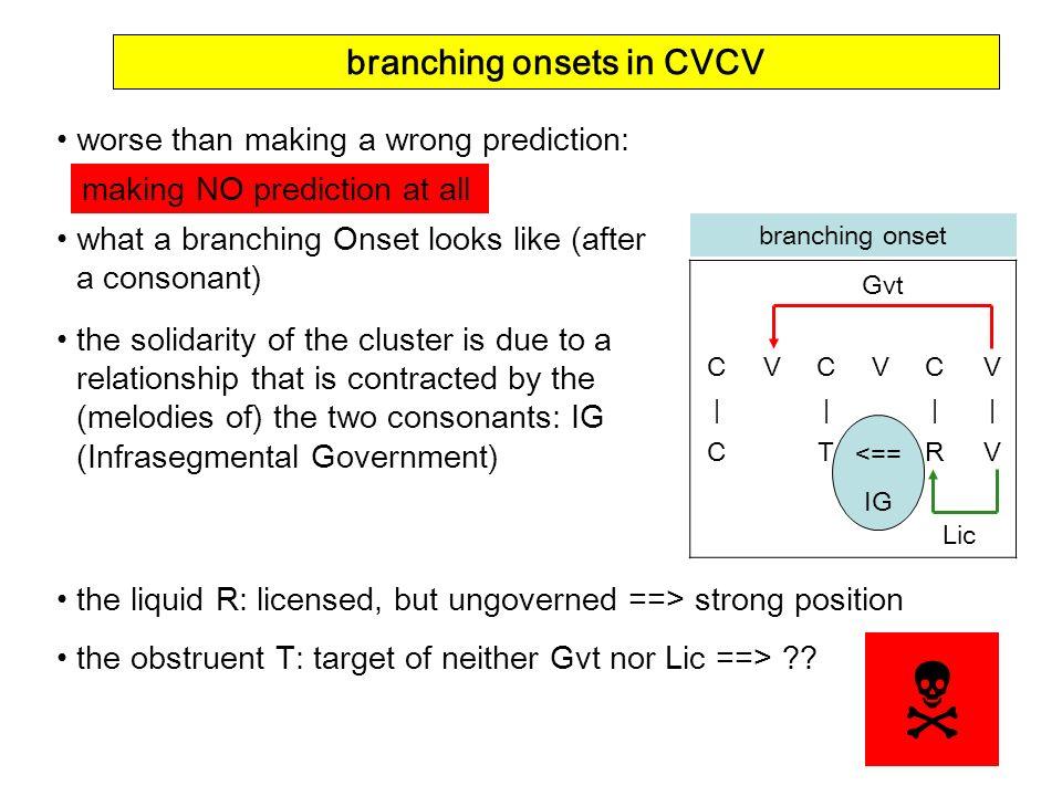 branching onsets in CVCV
