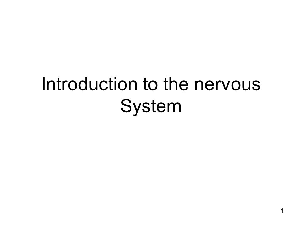 introduction to the nervous system To describe the functional divisions of the nervous system, it is important to understand the structure of a neuron neurons are cells and therefore have a soma , or cell body, but they also have extensions of the cell each extension is generally referred to as a process .