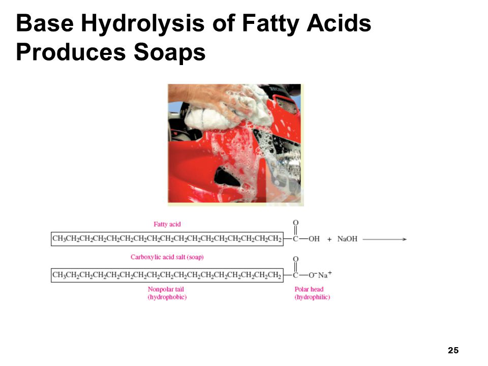 Base Hydrolysis of Fatty Acids Produces Soaps