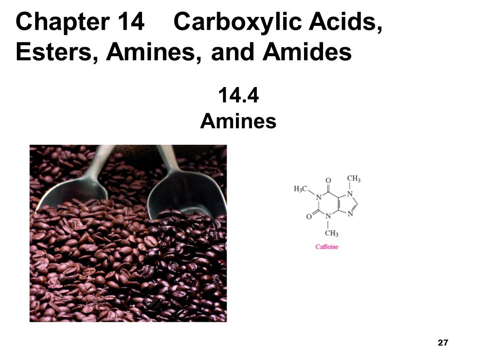 Chapter 14 Carboxylic Acids, Esters, Amines, and Amides