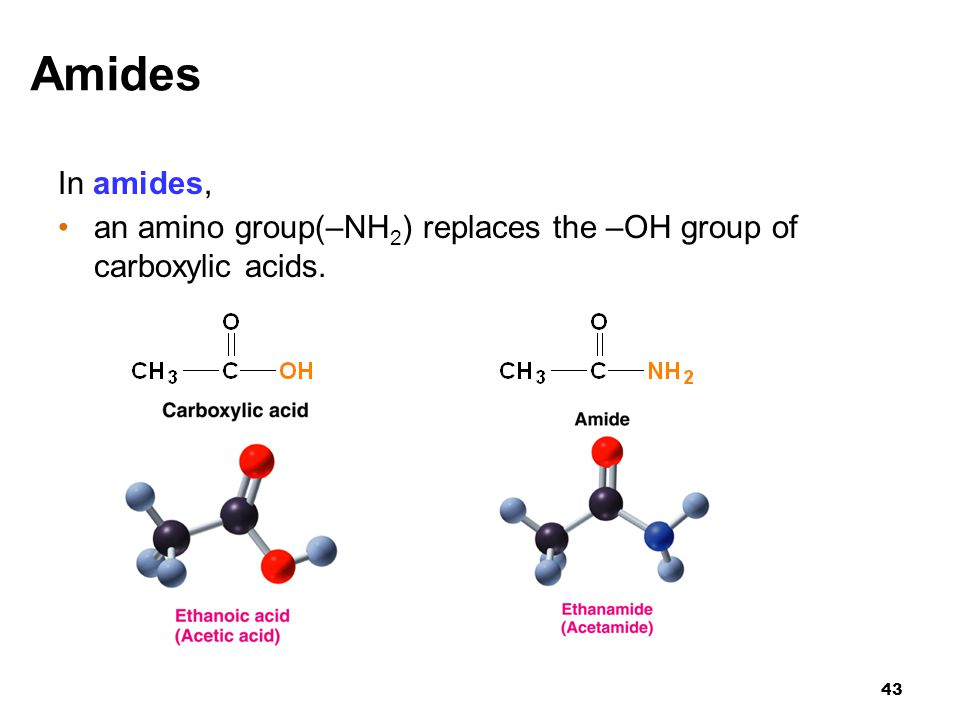 Amides In amides, an amino group(–NH2) replaces the –OH group of carboxylic acids
