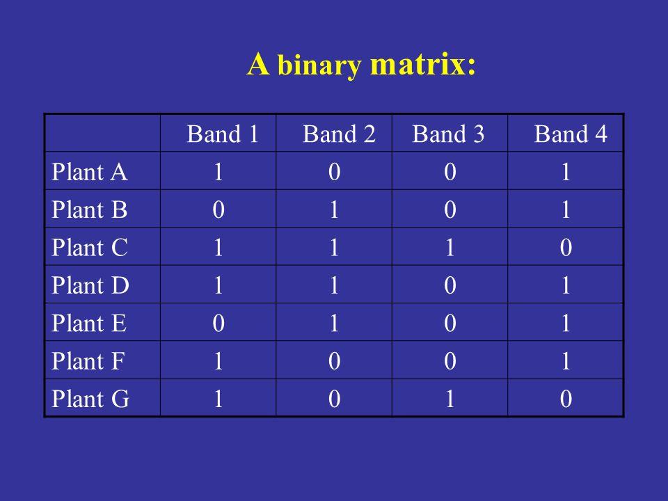 A binary matrix: Band 1 Band 2 Band 3 Band 4 Plant A 1 Plant B Plant C