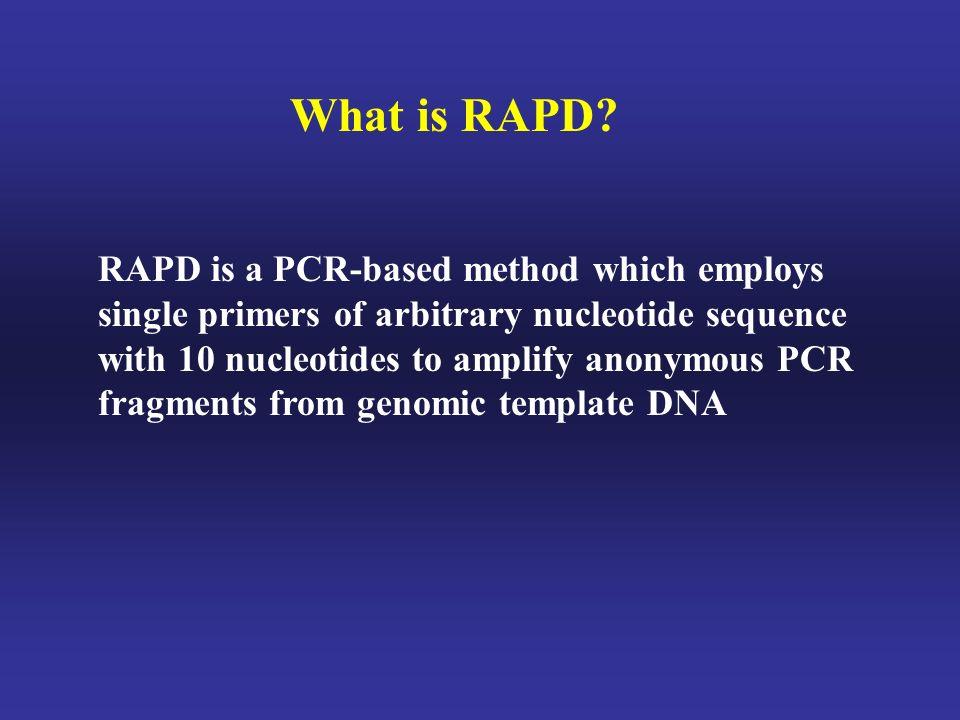 What is RAPD