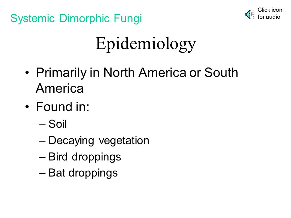 Epidemiology Primarily in North America or South America Found in: