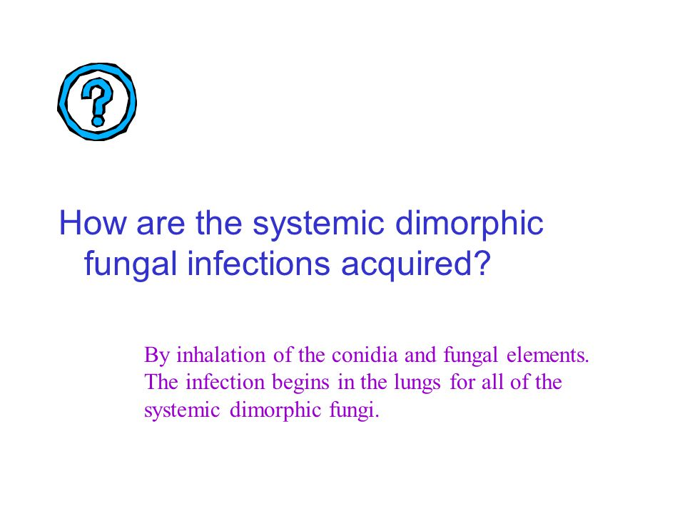How are the systemic dimorphic fungal infections acquired