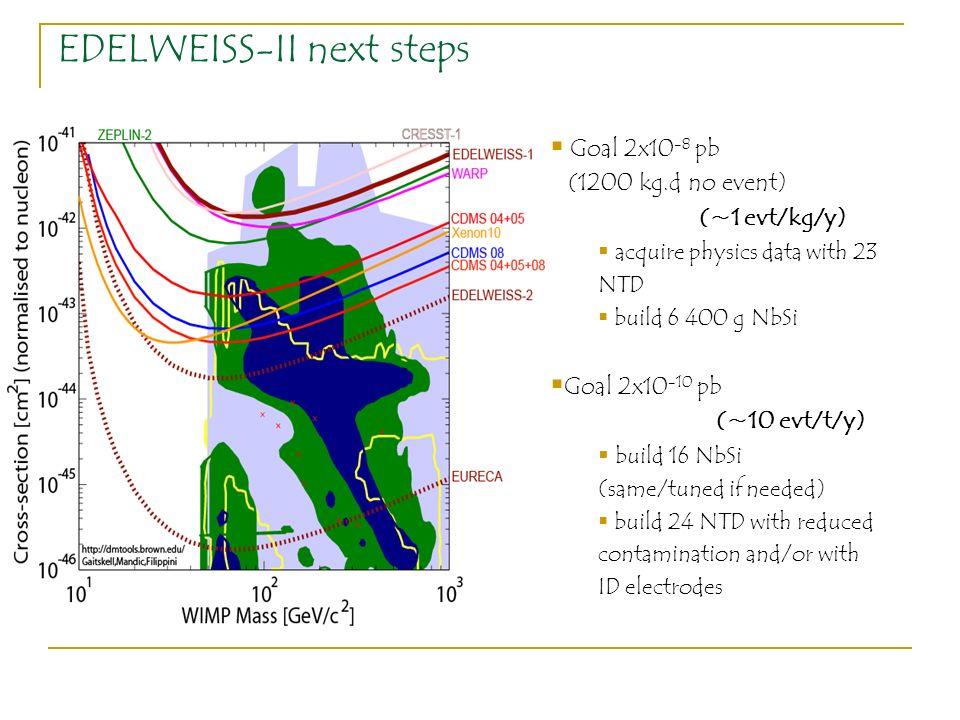 EDELWEISS-II next steps