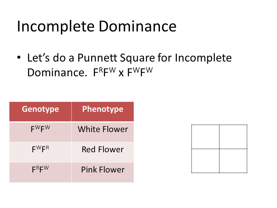 Chapter 10 Patterns of Inheritance - ppt video online download