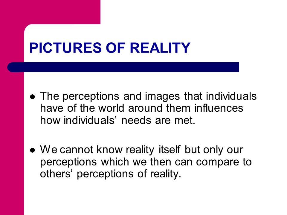 PICTURES OF REALITY The perceptions and images that individuals have of the world around them influences how individuals' needs are met.