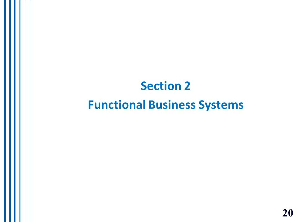 Section 2 Functional Business Systems