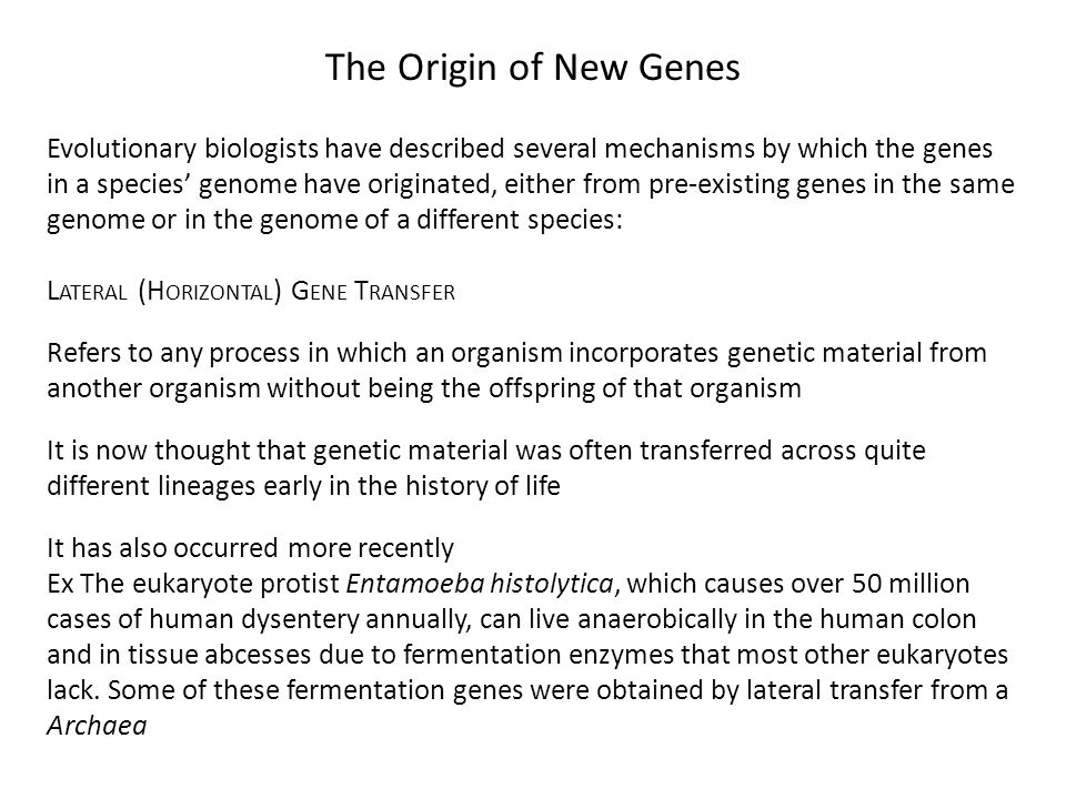 an introduction to the history of horizontal gene transmission Parallel horizontal gene transfer has spread a bacteriolytic gene family to   throughout the history of life (moran et al, 2012 lundin et al, 2010.