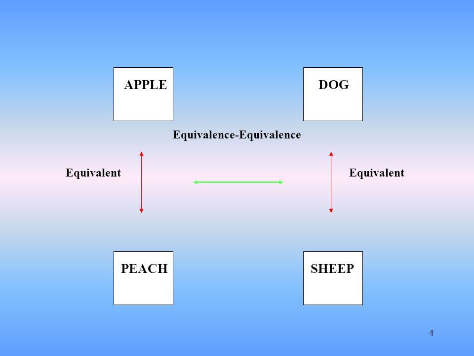 Equivalence-Equivalence