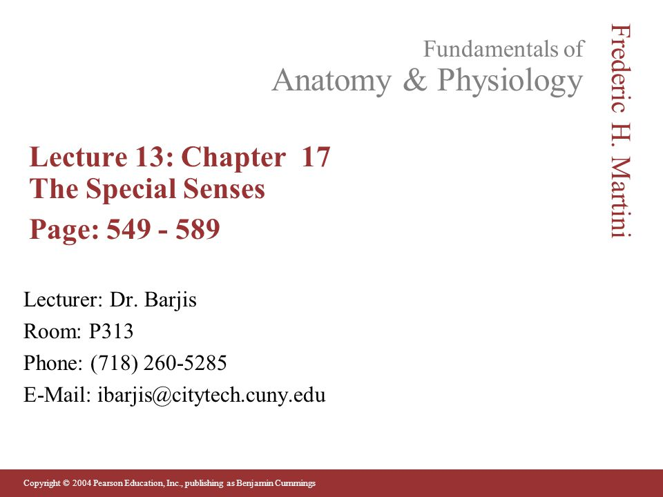 Old Fashioned Anatomy And Physiology Special Senses Powerpoint ...